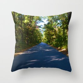 The road to Point Pelee National Park, Southern Ontario, Canada Throw Pillow