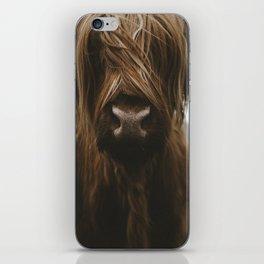 Scottish Highland Cattle iPhone Skin
