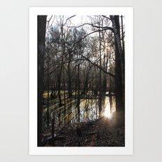 shadows & reflections Art Print