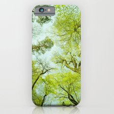 spring treetops  iPhone 6 Slim Case