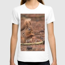 Nature woodland animals Red squirrel by a log T-shirt