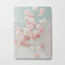 Gypsophila pink blush ll Metal Print