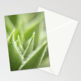 Sempervivum Stationery Cards