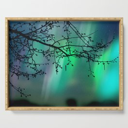 Tree Branch and Aurora Borealis Night Sky Serving Tray