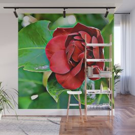 Red To Ignite Passion Wall Mural