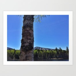Springtime View of Sugarloaf (2) Art Print
