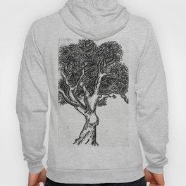 Tree Ink Print Hoody