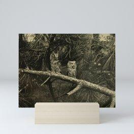 Vintage Print - Familiar Wild Animals (1906) - Billy and Betty, a Pair of Screech Owls Mini Art Print
