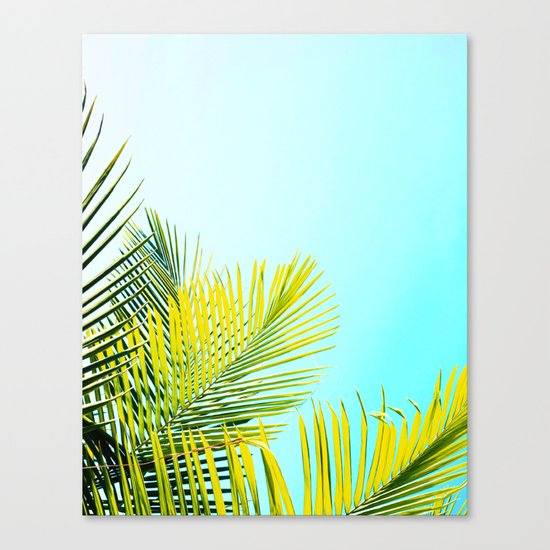 Palm Fronds Canvas Print