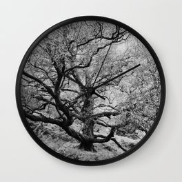 Tree - Landscape and Nature Photography Wall Clock