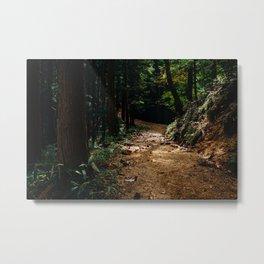 Trail Lights Metal Print