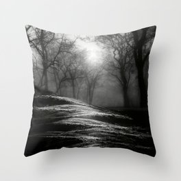 Black and White - From small beginnings and big endings Throw Pillow