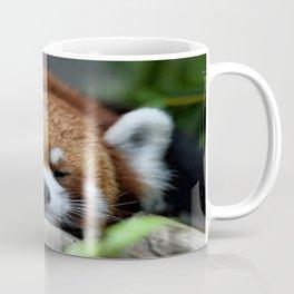 Big Panda Coffee Mug