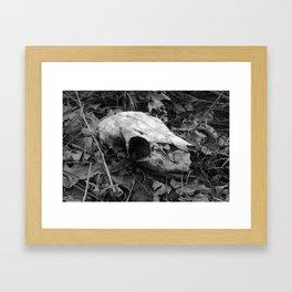 Black & White Deer Skull Framed Art Print