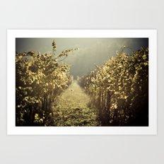 Autumn grapes vine Art Print