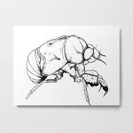 Exoskeleton Metal Print