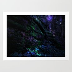 Midnight Enchantment : Forest Wall Art Print