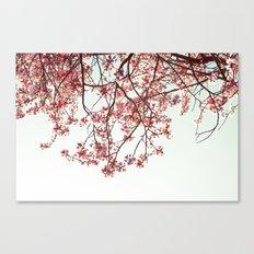 Beautiful day  Canvas Print