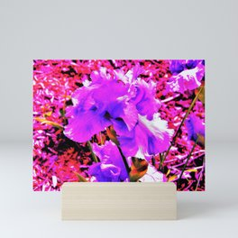 Abstract Ultra Violet Purple Iris on Red and Pink Mini Art Print