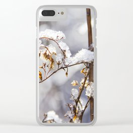 Frozen garden Clear iPhone Case
