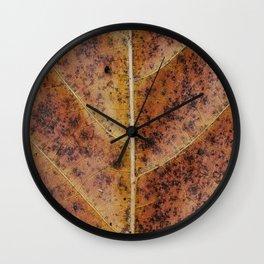 Dry old leaf Wall Clock
