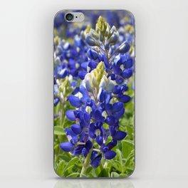 Bluebonnets iPhone Skin