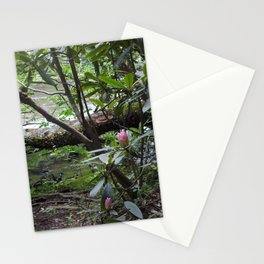 Rhododendron on Abrams Creek Stationery Cards