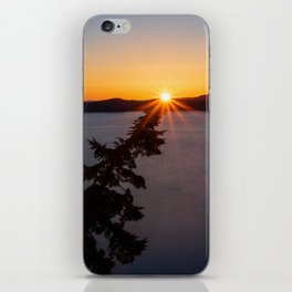 Sunset Tree Top iPhone Skin