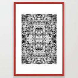 Florilegium 002 Framed Art Print