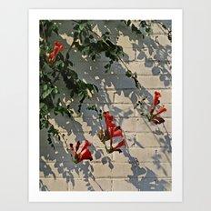 Red Summer Trumpets 2 Art Print