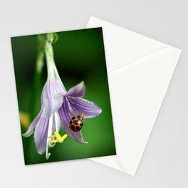Ladybug and Flower Stationery Cards