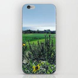 Rancho Palos Verdes iPhone Skin