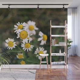 Flower Photography by Brendan Hollis Wall Mural