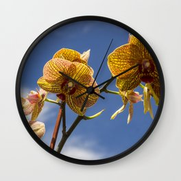 Orchid Wall Clock