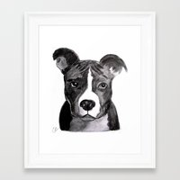 pit bull Framed Art Prints featuring Pit Bull Dogs Lovers by Gooberella