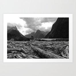 Tree debris, Milford Sound, New Zealand Art Print