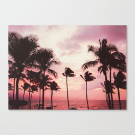 Tropical Palm Tree Pink Sunset Canvas Print