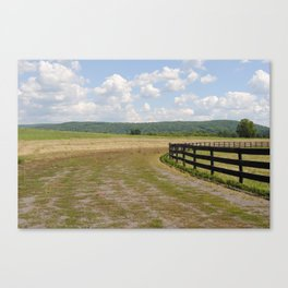 ithaca is fences Canvas Print