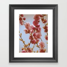 Early March Framed Art Print