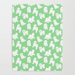 Bichon Frise Pattern (Green Background) Poster