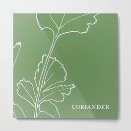 Coriander Metal Print