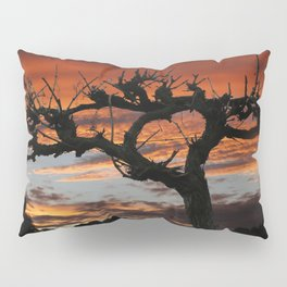 The Vines in Winter Pillow Sham