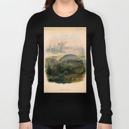 Vintage Scientific illustration, c. 1880 (Manatees) Long Sleeve T-shirt