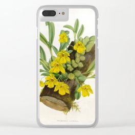 Vintage Yellow Orchids Log Lindenia Collection Clear iPhone Case