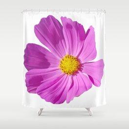 Pink Cosmos Flower Shower Curtain