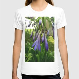 Purple Agapanthus T-shirt
