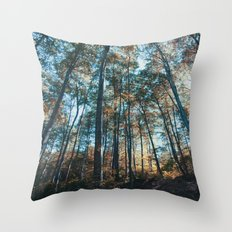 into the woods 07 Throw Pillow