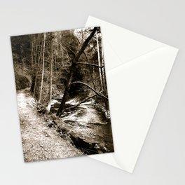Follow Your Path Stationery Cards