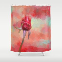 Red Rose In Spring Shower Curtain