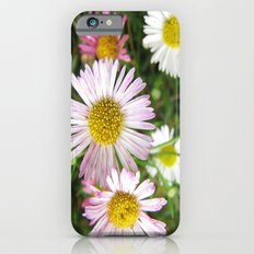 Daisies in the Grass iPhone 6s Slim Case